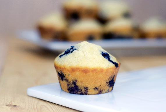 Blueberry Muffins Tumblr Blueberry Muffin