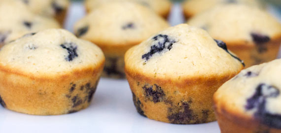 Blueberry Muffins Tumblr Blueberry Muffins