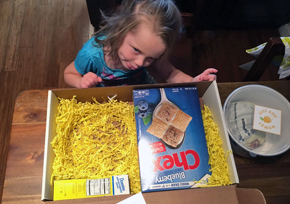 Chex Muddy Buddies Promotional Box