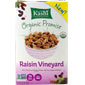Raisin Vineyard