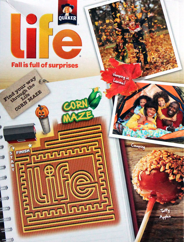 Pumpkin Spice Life Cereal Box (Back)