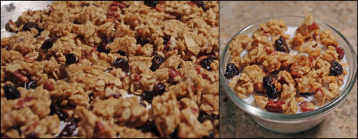 Maple Pecan Granola Clusters Cereal