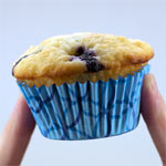 Nova Scotia  Blueberry Muffins