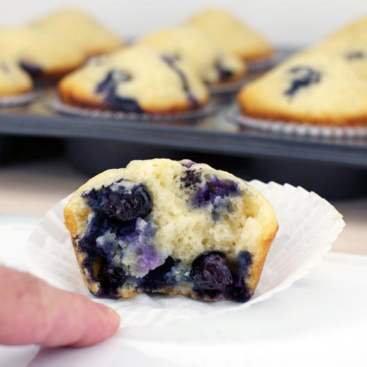 Low Fat Blueberry Muffin Recipe
