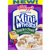 Touch Of Fruit Mini-Wheats